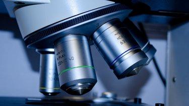 Co po analityce medycznej?