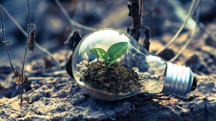Co po inżynierii środowiska?
