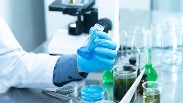 Praca jako mikrobiolog – studia, wymagania, zarobki
