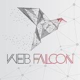 Praktyki, Staż Web Falcon