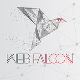 Praca, praktyki i staże w Web Falcon