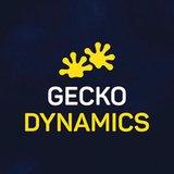 Praca, praktyki i staże w Gecko Dynamics